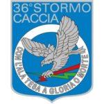 36° Stormo dal 1938 ad oggi