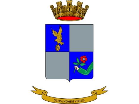 """1° Reggimento di Sostegno AVES """"IDRA"""""""